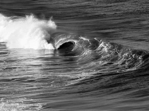2_central_coast.jpg
